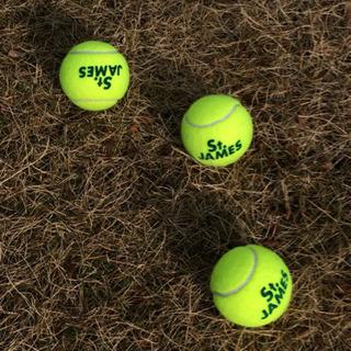 テニス  プライベートグループレッスン