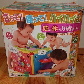 頭と体の知育box People