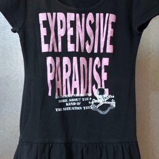 レディース  L  綿100% Tシャツ (中古品)