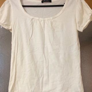 レディース M 綿100% Tシャツ (中古品)