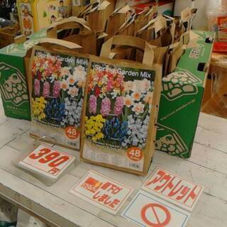 1/31 スプリングガーデンミックス40球590円→390円に値...