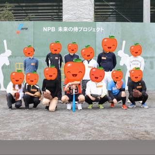 草野球チーム⚾️メンバー募集❗️男女素人問わず!