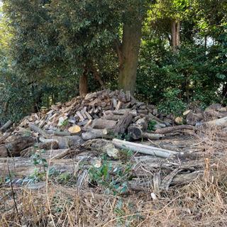 割れ木 木材 暖炉