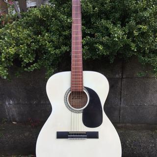 白いギター差し上げます!