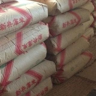 ✳️☪️令和2年産 ひのひかり 20kg 玄米です