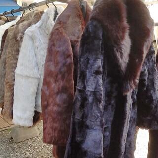 毛コート 5千円から各種有ります、見て下さい。