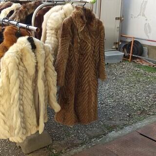 毛皮コート各種有ります、見て下さい。