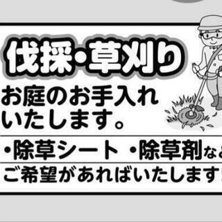 草刈、伐採(2月9日~2月29日期間限定‼️)