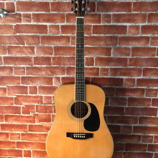 キャッツアイ ウエスタンフォークギター CE-250 中古