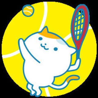 硬式テニス練習 メンバー募集 岡崎