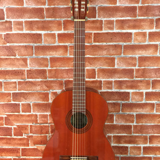 スズキガットギター 日本製 中古