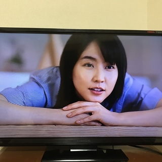 ORION  地上デジタル液晶テレビ 23インチ