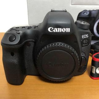 Canon 6D Mark II •  EF 24-105mm