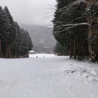 更新、2/8(土)広島県民の森スキー場