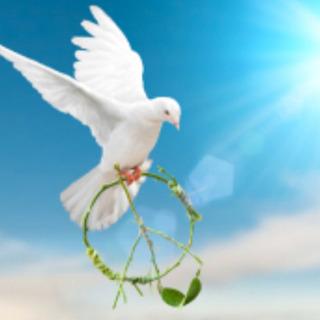 平和な世界や幸福な社会を築いていきたい方
