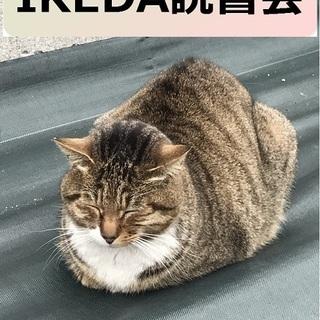 IKEDA読書会『課題本:21Lessons』~人類の現状を見渡...