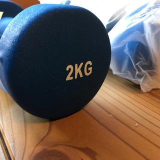 鉄アレイ 2kg 2個セット