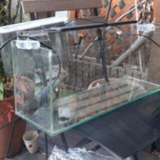 水槽 60cmスリム セット