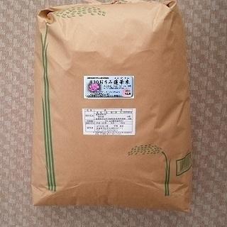 こだわりのお米-玄米30kg(他10、20kg)-37