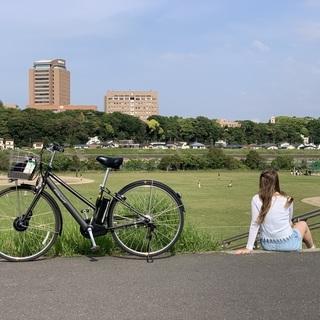 電動自転車 ブリジストンAlbelt 2019年モデル 2台