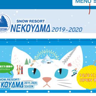 13日に猫山スキー場行きませんか?