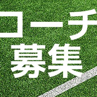 学生・一般 素人テニスコーチ募集 硬式 1h ¥1,000