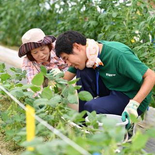 【障がい者求人】イベント開催‼~野菜収穫体験会~ 「やってみた」...