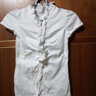 フリル付き半袖 Mサイズ