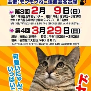 【中止】3月29日(日) 猫の譲渡会 in 天白区八事 高照寺(...