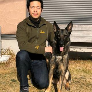 プロの訓練士による愛犬しつけ相談