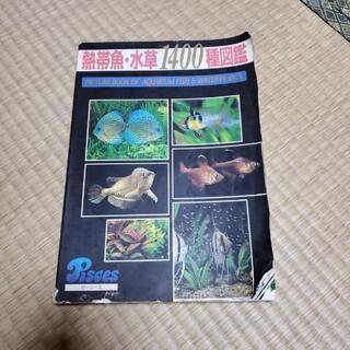 古本 熱帯魚 水草1400種図鑑