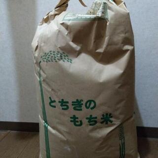 あと1袋あります‼️30年栃木県産ヒメノモチ30キロ玄米
