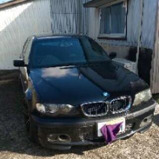 BMW E46エンジン死んでます。