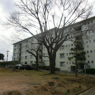 利回り16.11%☆船橋市区分マンション☆金杉台団地502号室