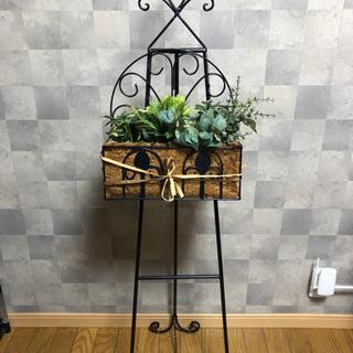植物 雑貨
