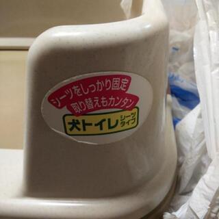 ワンちゃんトイレ、ワイドサイズの画像