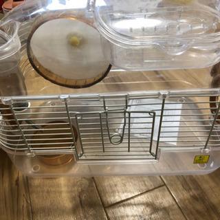ハムスター飼育キット ルックルックフォーチュン − 静岡県