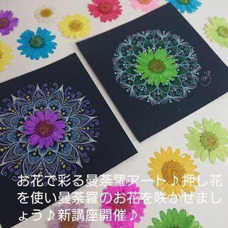 お花で彩る曼荼羅アート♪押し花を使い曼荼羅のお花を咲かせましょう♪