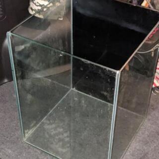 30センチ オールガラス水槽  ⑰