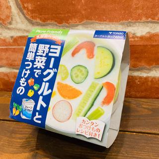 在庫処分SALE ★ヨーグルトと野菜で簡単つけもの★
