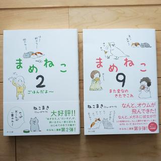 【猫マンガ】まめねこ 2・9/ねこまき