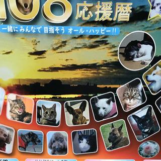 【40%OFF】犬猫保護団体支援・カレンダー 令和2年1月〜12...