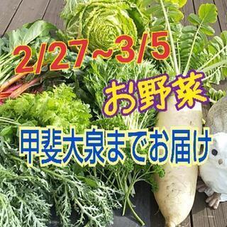 27~3/5日甲斐大泉の付近の方‼️お野菜お届けします😊