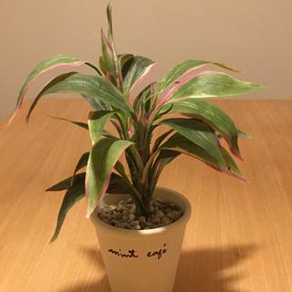 人工観葉植物 高さ25cm