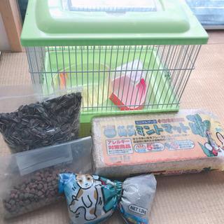 【23日取引限定】ハムスター飼育セットの画像