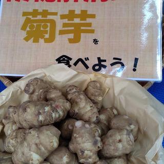 今、ブームです! 頑固な便秘解消には菊芋! 店頭で好評販売中です...