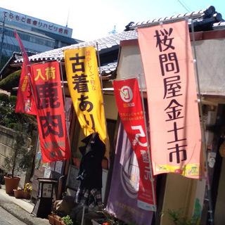 便秘解消にブーム中の『菊芋』を今日・明日、店頭販売しています(桜...