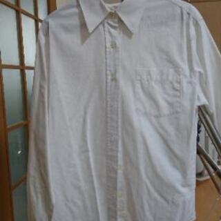 式服シャツ