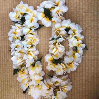 ハワイアン 花飾りプルメリア