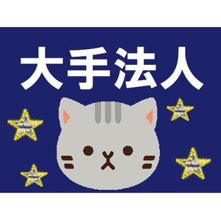大手グループ法人☆年収400万以上を目指せます♪(大阪狭山市・グ...
